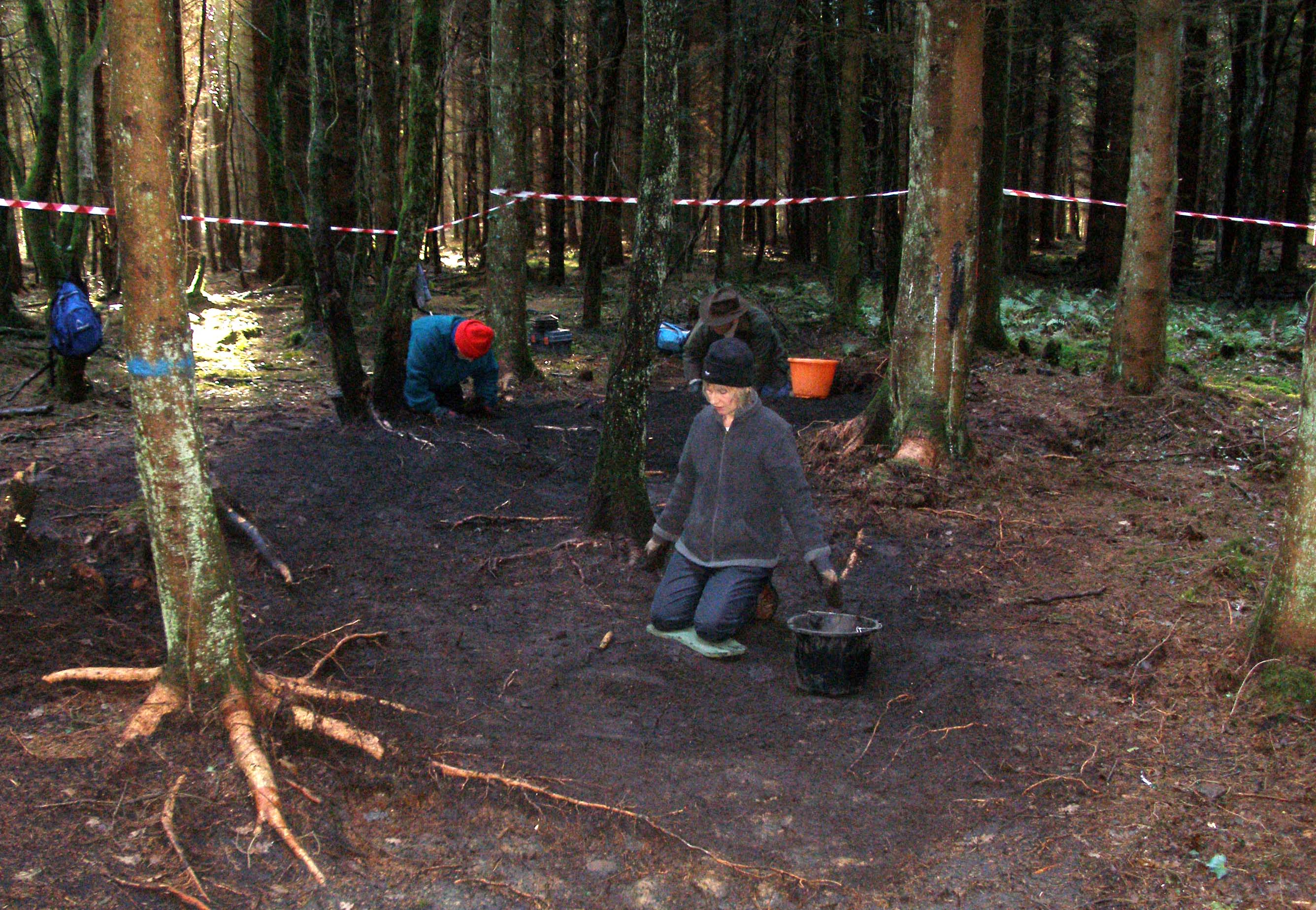 Digging charcoal hearths in Wentwood Forest